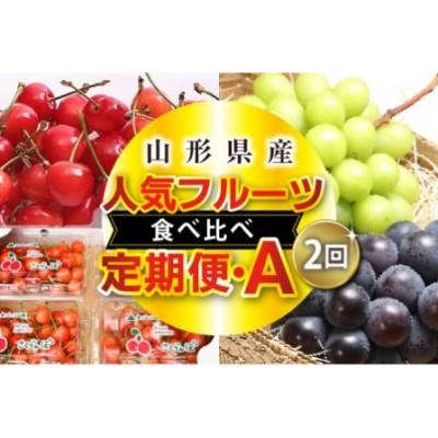 《先行予約》人気フルーツ食べ比べ定期便A(2回) F2Y-1540