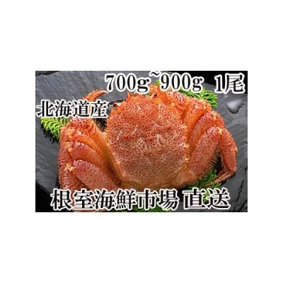 ふるさと納税 毛がに700〜900g×1尾 B-14020 北海道根室市