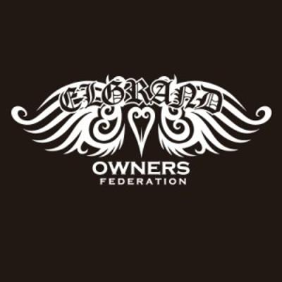 カッティングステッカー 日産(NISSAN)エルグランド ELGRAND tribewing1 車 カー ステッカー アクセサリー シール ガラス[◆]