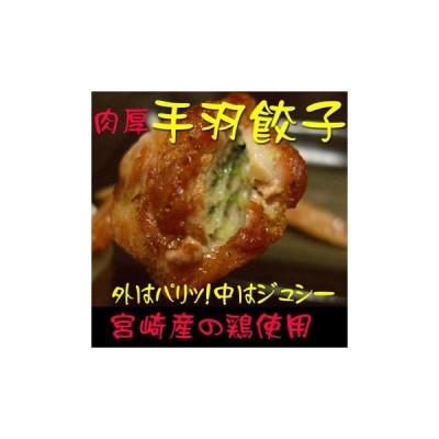宮崎産の使用 肉厚手羽餃子〜10本入り〜ジューシーでやわらか!