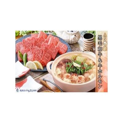 ふるさと納税 BB-126 A5等級黒毛和牛やわらか焼肉・牛ホルモン(もつ鍋スープ付) 鹿児島県枕崎市