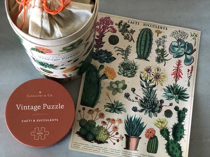 Cavallini 1000片拼圖 多肉圖鑑 Cacti & Succulents | 預購