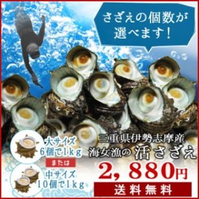 三重県 伊勢志摩産 海女漁 天然 活 さざえ 1kg 送料無料 サザエのサイズと個数が選べます お中元 ギフト