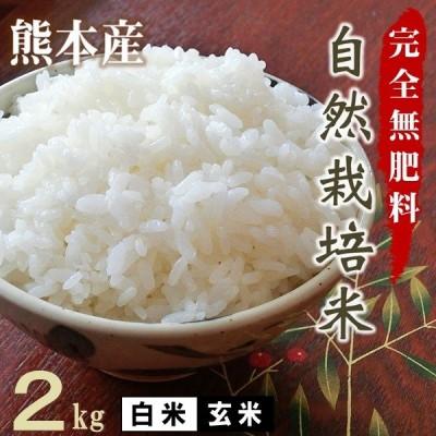 完全無肥料 自然栽培米 令和2年産 ヒノヒカリ 2kg 農薬化学肥料不使用 白米 玄米 熊本 放射能検査済み