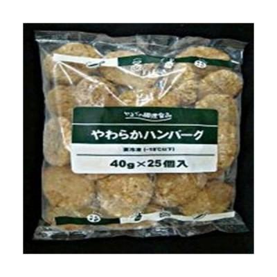 ヤヨイサンフーズ やわらかハンバーグ 40g 25個冷凍