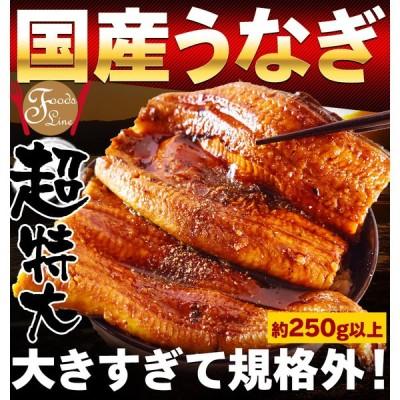 うなぎ 蒲焼き 国産 特大 250g 鰻