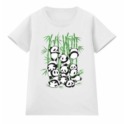 【パンダ 笹 動物】レディース 半袖 Tシャツ by Fox Republic