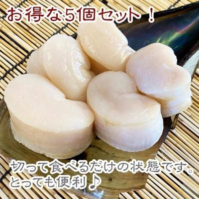 平貝(貝柱のみ)天然平貝 中5個セット 【愛知県産】
