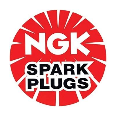 NGK ( エヌジーケー ) イリジウムプラグ (ターミナル一体形)1本 6991R7376-7 スパークプラグ