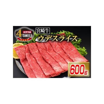 ふるさと納税 B120-20 《肉質等級4等級以上》宮崎牛ウデスライス(600g) 宮崎県日南市