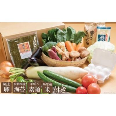 直売所店長おすすめの野菜セット(極上卵、有明海産海苔、手延べ素麺、島原産米付き)