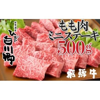 飛騨牛 ミニステーキ もも肉 500g JAひだ ミニステーキ お中元 お歳暮 ギフト[S099]