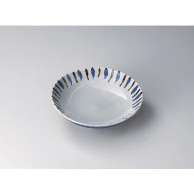 トチリ二色十草7寸メン皿 ト302-047