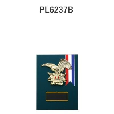 楯 PL6237B 26×19cm 文字入れ無料