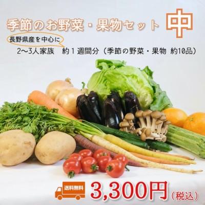 季節のお野菜・果物セット 中