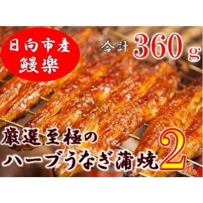 15-11 宮崎県日向市産・鰻楽ハーブうなぎ蒲焼2尾