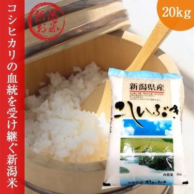 新潟こしいぶき20kg(5kg×4)   令和3年度コシイブキ新米白米