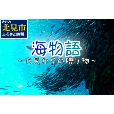 【C-067】海物語~北見からの贈り物~【3ヶ月定期便】