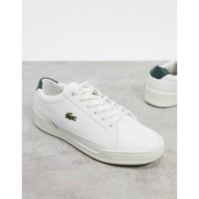 ラコステ メンズ スニーカー シューズ Lacoste challenge sneakers in white green leather White