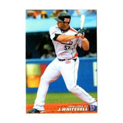 カルビー2011 プロ野球チップス レギュラーカード No.60 ホワイトセル