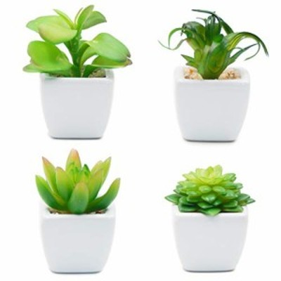 TOSSOW 人工多肉植物 ミニ 人工観葉植物 枯れない インテリア 4点セット 正方形 プレゼント B07B66Z8VM