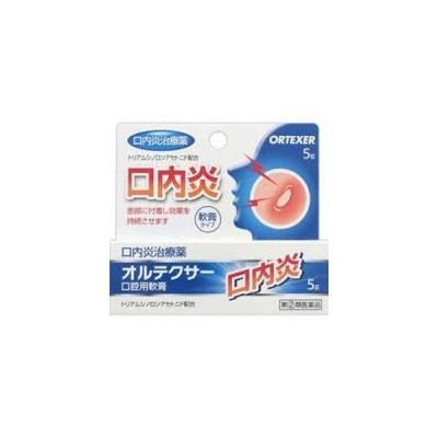 オルテクサー口腔用軟膏 5g 1個 福地製薬 【第(2)類医薬品】