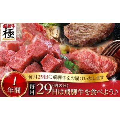《自分へのご褒美にも》飛騨市推奨特産品飛騨牛 毎月29日(肉の日) 飛騨牛を食べよう! 1年バージョン お肉 定期便[O0002]