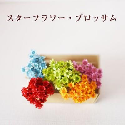スターフラワー 小分け 花 プリザーブドフラワー ドライフラワー 花材