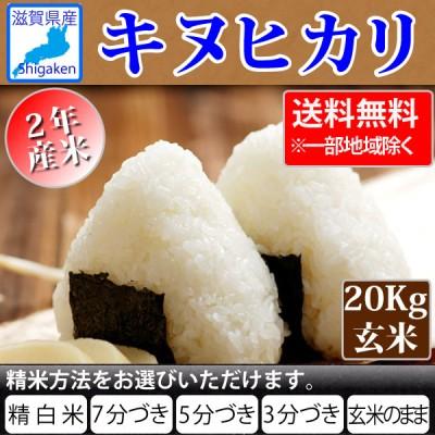 令和2年産 新米 滋賀県産キヌヒカリ20Kg玄米(10Kg×2本) 【精米方法が選べます】 お好きな分つきに 健康応援   送料無料※一部地域を除く