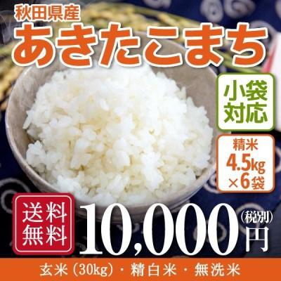 米 お米 30kg 秋田県産 あきたこまち 令和2年産 5kg×6袋
