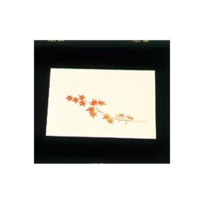 遠赤外線抗菌和紙 四季の花 尺三懐石まっとクリーム(100枚入) WSS-12 もみじ 9月から11月/業務用/新品