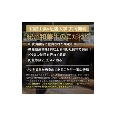 BN6011_【紀州和華牛】ロースステーキ 500g(約250gx2枚)