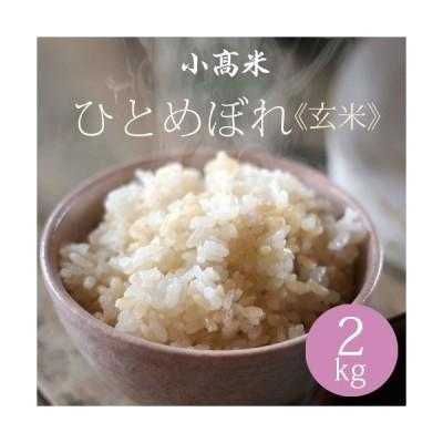 玄米 新米 米 お米 ひとめぼれ 小高米 2kg 令和2年