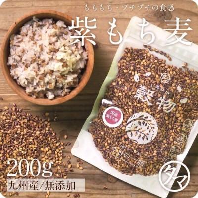 紫もち麦 九州産 250g 雑穀 雑穀米 国産 もち麦 食物繊維 無添加 β-グルカン デブ菌 ダイエット 美容 健康 ダイシモチ ポリフェノール 送料無料
