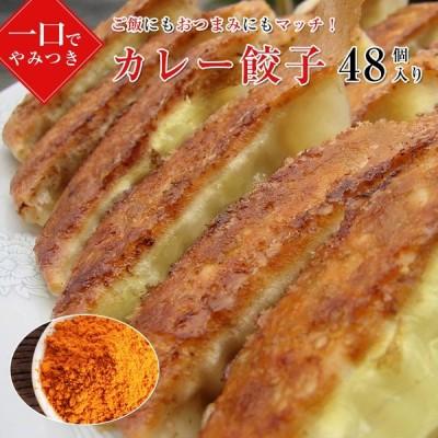 【curry48】旨みタップリ!スパイシー!カレー餃子48こ(送料別)