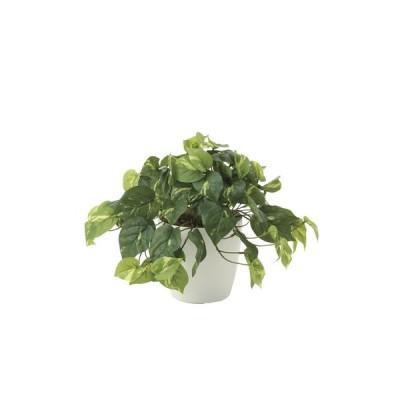 ポイント10倍《アートグリーン》《人工観葉植物》光触媒 光の楽園 フレッシュポトス