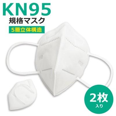 KN95マスク 2枚入り  米国N95マスク同等 5層構造 使い捨てマスク 中国製