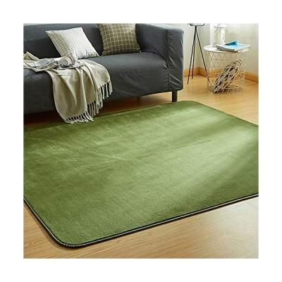 カーペット ラグ 洗える 滑り止め付 防ダニ 抗菌 防臭 135×185cm(約1.5畳) 12色選べる 1年中使えるタイプ 床暖房 ホットカーペット