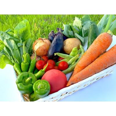 【エグゼクティブ専用】 食べるだけで稼げる『社長の野菜』レシピ付き!