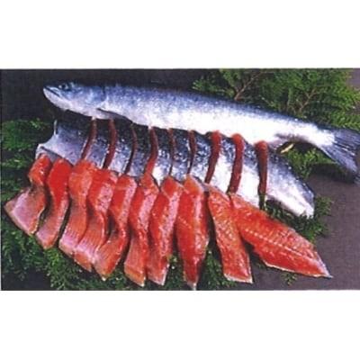 セレクト朝市「北洋産紅鮭」[8431382]