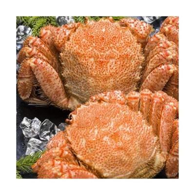 海鮮蟹工房 北海道 オホーツク海産 ボイル冷凍 毛がに 800g前後 2尾