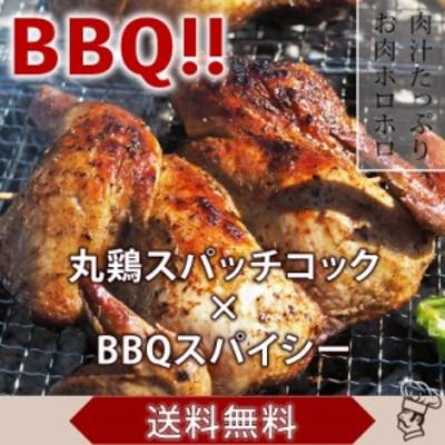 【 送料無料 】 バーベキュー BBQ 鶏の丸焼き 丸鶏 1羽 ボリューム スパイシー グリル 生 惣菜 肉 チルド アウトドア パーティー