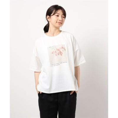tシャツ Tシャツ 転写プリントTシャツ