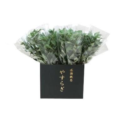 代引き不可 ニューホンコン造花 シキミ(ラップ入・展示箱付)グリーン30本入  142501   4533406142501