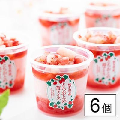 【6個】栃木県産 とちおとめ苺アイス(EG-T6)「とちおとめ」づくしの華やかなアイスカップ!