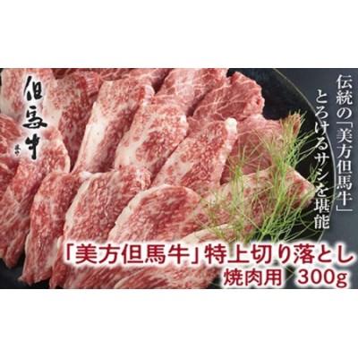 【美方但馬牛】特上切り落し300g(焼肉用)