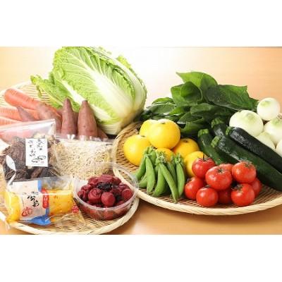 K04_0001 <木城町産農産物と加工品セット>