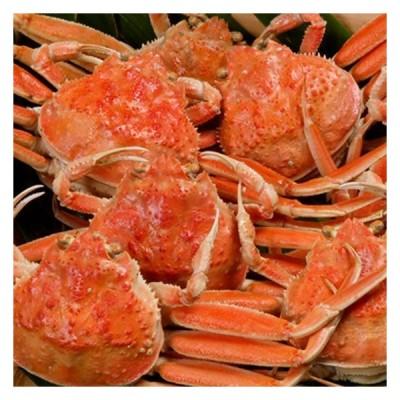 カニ 蟹 ゆでセコガニ せこがに せいこ蟹 140g前後 5匹セット ズワイガニ メス 山陰 日本海 兵庫県