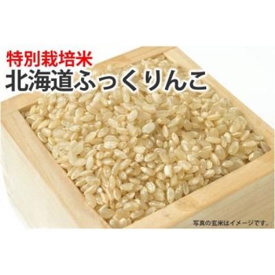 特別栽培米・北海道ふっくりんこ【玄米】1kg