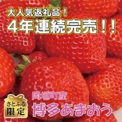 【さとふる限定】岡垣町産「博多あまおう DX(デラックス)」270g×4パック